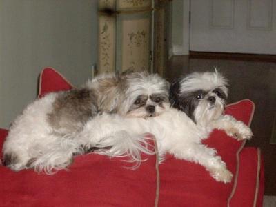 Sophie & Phoebe